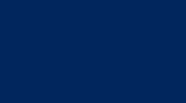 ALMIDES POLSKA Logo